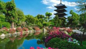 Book an Exotic Holiday in Japan